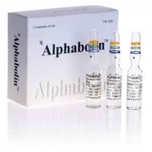 Methenolone enanthate (Primobolan depot) in USA: low prices for Alphabolin in USA